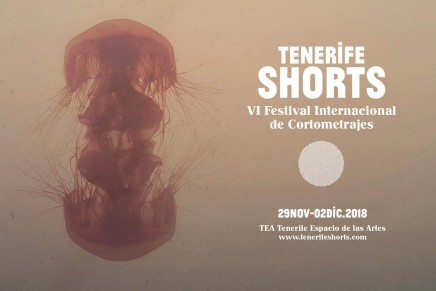 4.cartel tenerife shorts horizontal